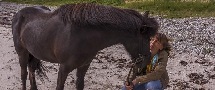 Oversigt over kursusdatoer for rideterapeut uddannelsen i 2021