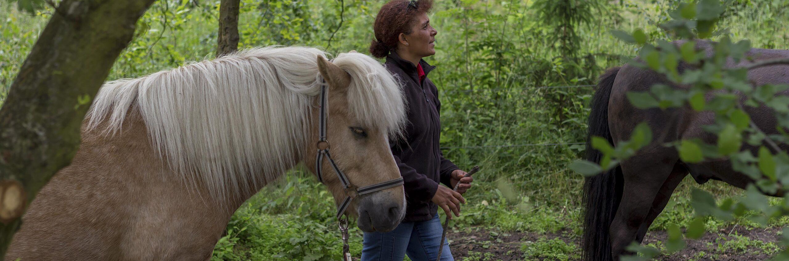 Rideterapeut i Røsnæs skove hos skolen for rideterapi