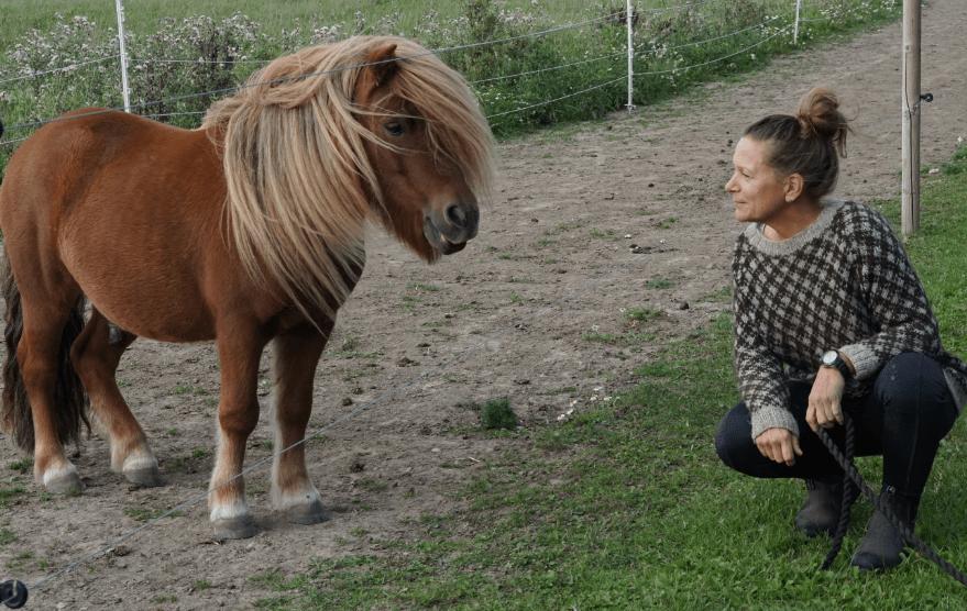 Søtofte Natur og Rideterapi v/Henriette Petersen