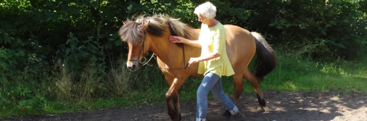 Horsemanship med tillidsøvelser som holde hånd med let stilling