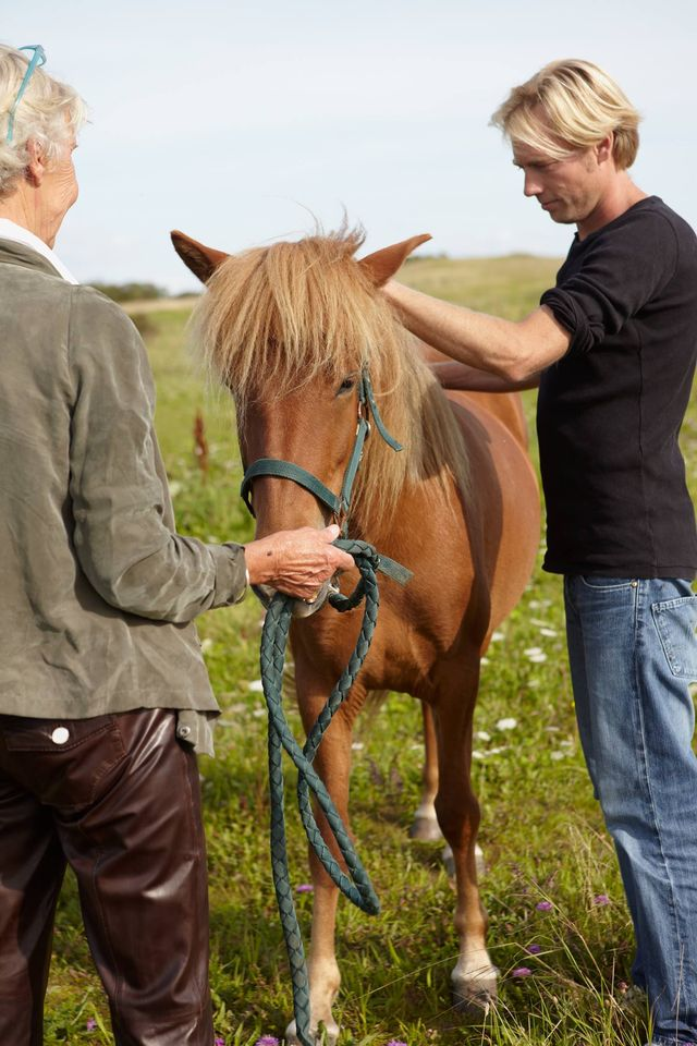 Being with the horse is a very important component in becoming an equestrian therapis