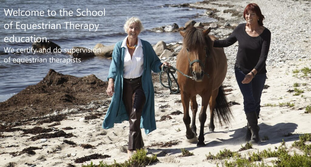Welcome to the School of Equestrian Therapy. We certify and do supervision of equestrian therapists